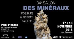 34ème SALON MINERAUX, FOSSILES, PIERRES TAILLEES @ Salle Emeraude
